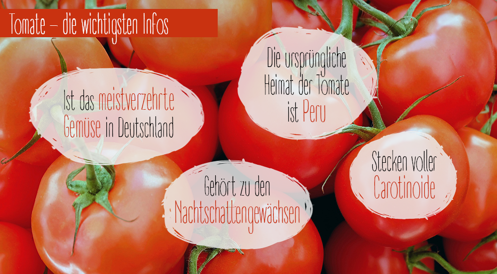 Tomate_Facts